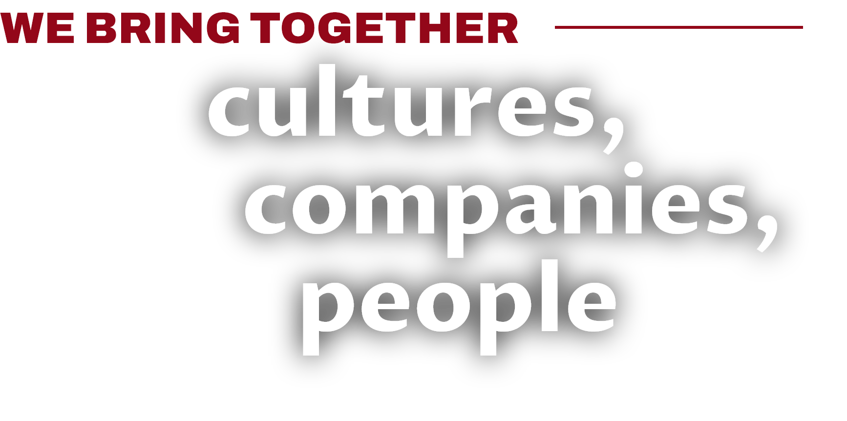 We bring together cultures, companies, people